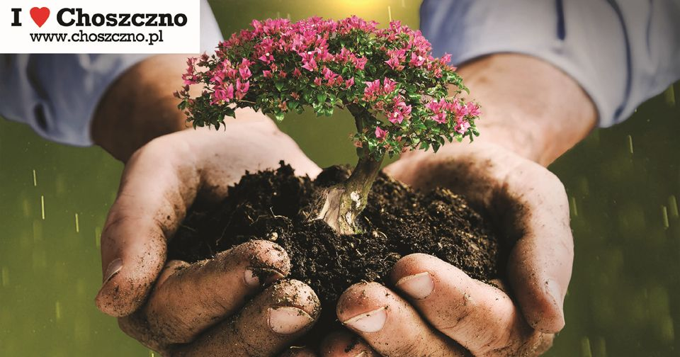 Akcja 101 drzew dla Choszczna